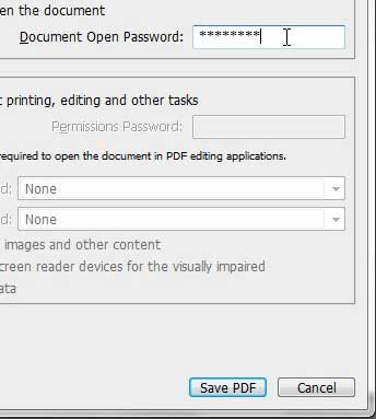 choose your pdf password